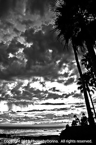 Colorful Sunset in Laguna Beach in B&W