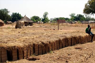 Abraham's bricks covered with grass to reduce rapid moisture release which leads to cracking.