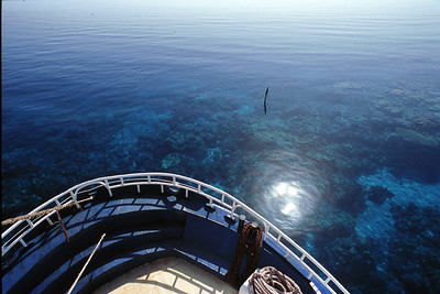 Sudanese Red Sea