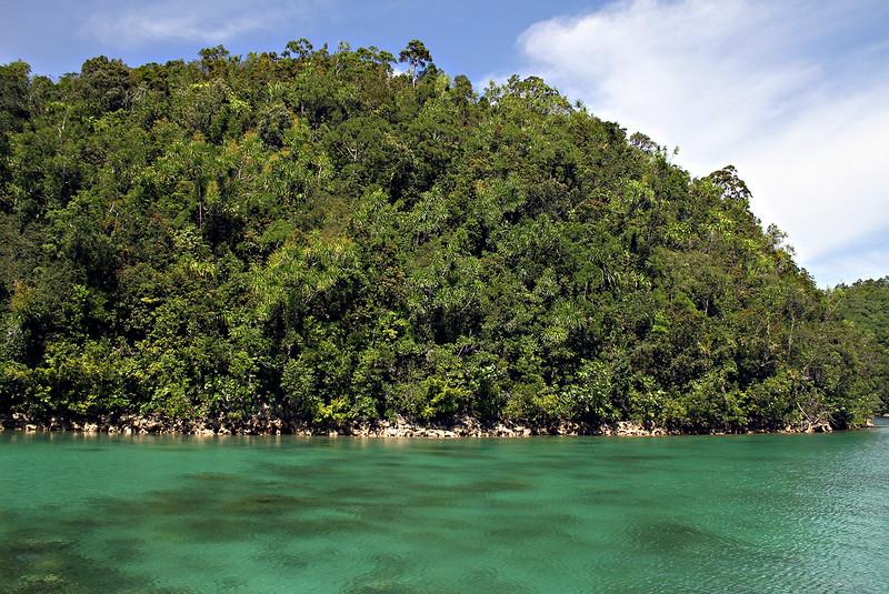 The scenic view of the lush green vegetation surrounding the lagoon. (Erwin M. Mascarinas)