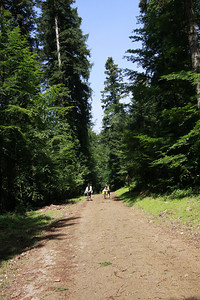 Vallée de la Loue - 5