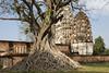 Sukhothai Wat Si Sawai