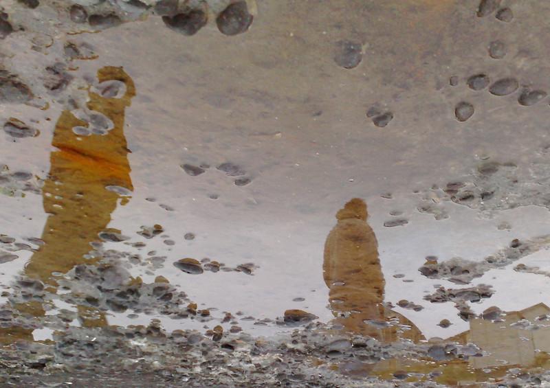 Á gömlu bryggjunni á Bakkafirði