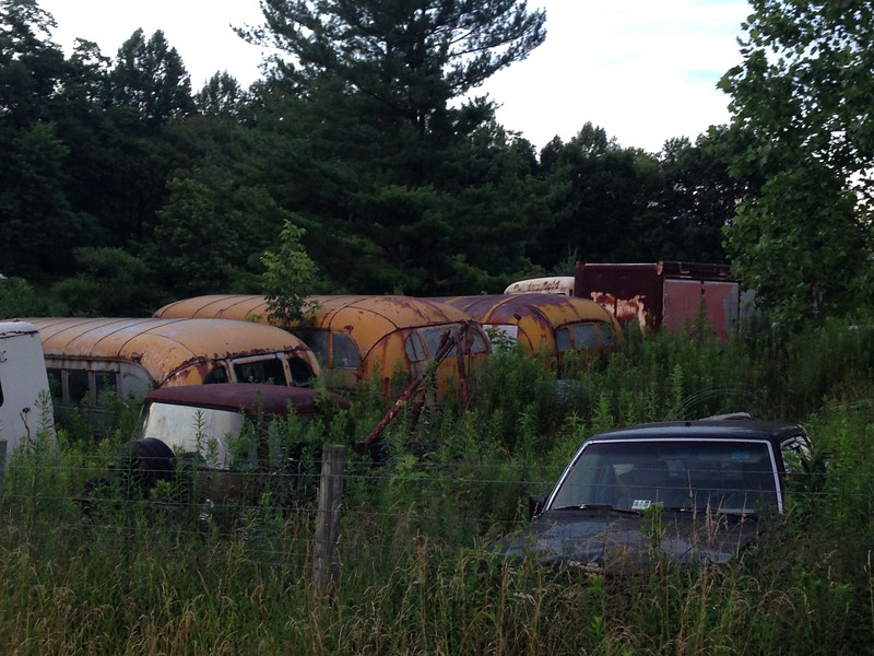 Of all things, there was a school bus hoarder in the adjoining acreage.