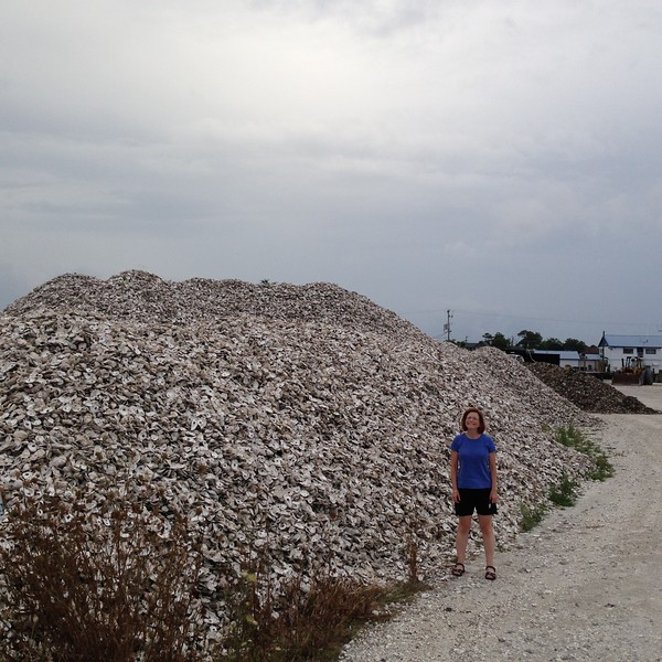 At the end of the day we had to see what the Seafood Industrial Park was all about. Most everything was closed, but it's a whole center for maintaining and fixing boats, along with fishing operations. This vast pile of oyster shells is being collected to form the foundations of new oyster beds, how cool is that? It looks like they collect them from restaurants and maybe commercial oyster canneries.