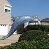 Here's a trippy blue mosaic dolphin. We also saw a mirror tile mosaic one.