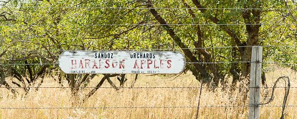 Sandoz Orchard Nebraska Sandhills August 2007