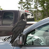 This raven was hanging out on various vehicles.