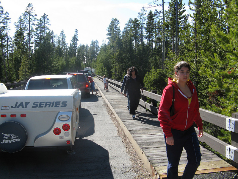 We had made reservations at Grant Village. This was the line into the campground to register. It took well over an hour to get to our spot.