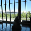 Nice view of the Tetons from the inside of the visitor center.