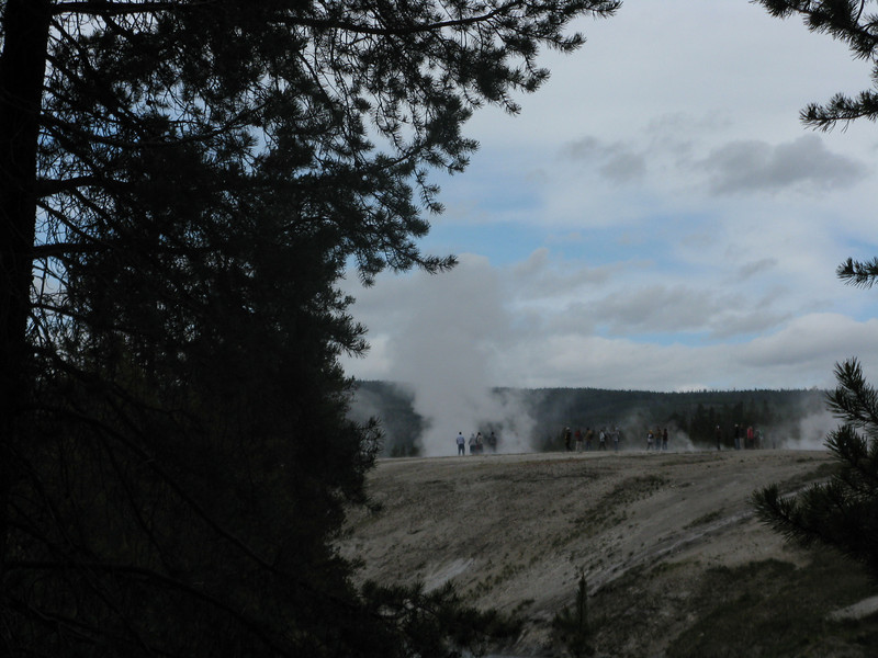 Geyser in the distance going off.