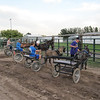 Watched the local 4h Cart Driving Teams practice for an upcoming event at the local Fair.