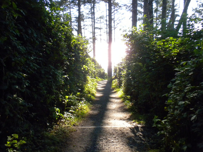 It was a much more open woodland path to Ruby Beach.