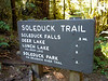 Correct pronunciation made clear.  Most spellings I saw were Sol Duc.