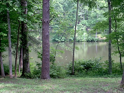 lake <br /> This lake was close enough to throw rocks at it from our campsite
