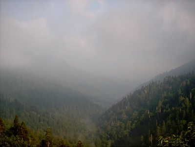 Thru the Smokies <br /> This was taken from the Blue Ridge Pkwy.