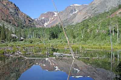 8/17/11 View of Mill Creek (& beaver dams) from dirt road between Lundy Lake Resort and Lundy Canyon trailhead. Eastern Sierras, Mono County, CA