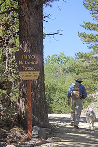 8/17/11 Entering Inyo National Forest on the dirt road between Lundy Lake Resort and Lundy Canyon trailhead. Eastern Sierras, Mono County, CA