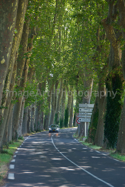 A road in the Languedoc