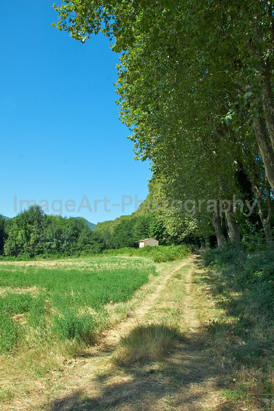 Pathway through fields in France