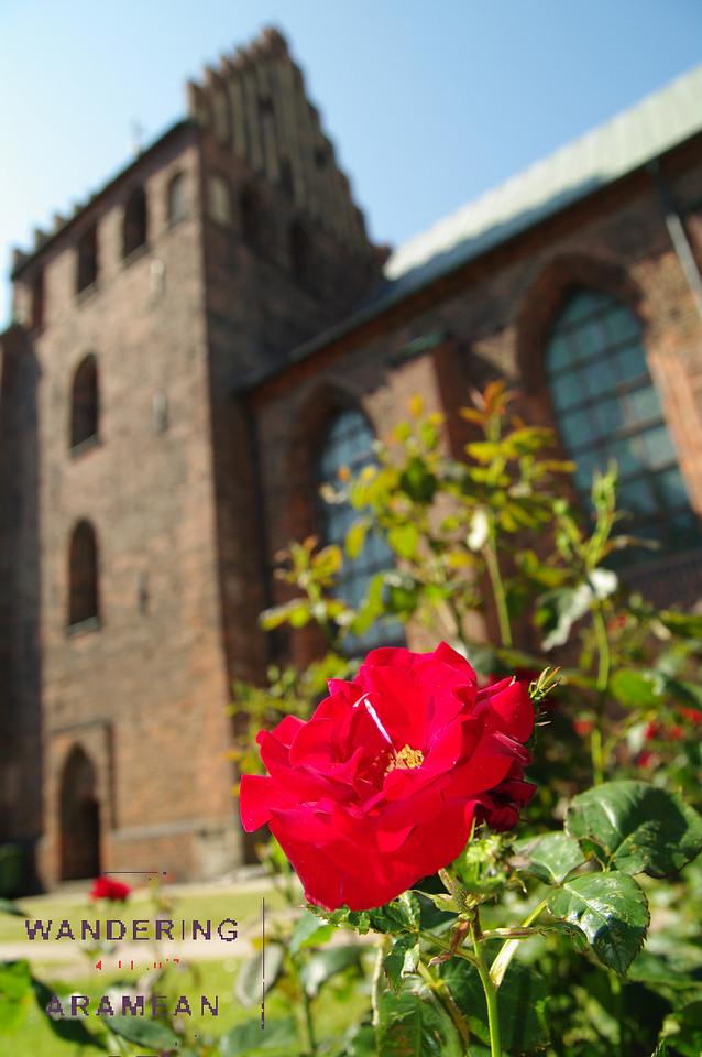 Flowers outside the church in Helsingbor