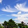 "Carolina Sky from Calloway Peak.<br /> <br />  <a href=""http://sillymonkeyphoto.com"">http://sillymonkeyphoto.com</a>"