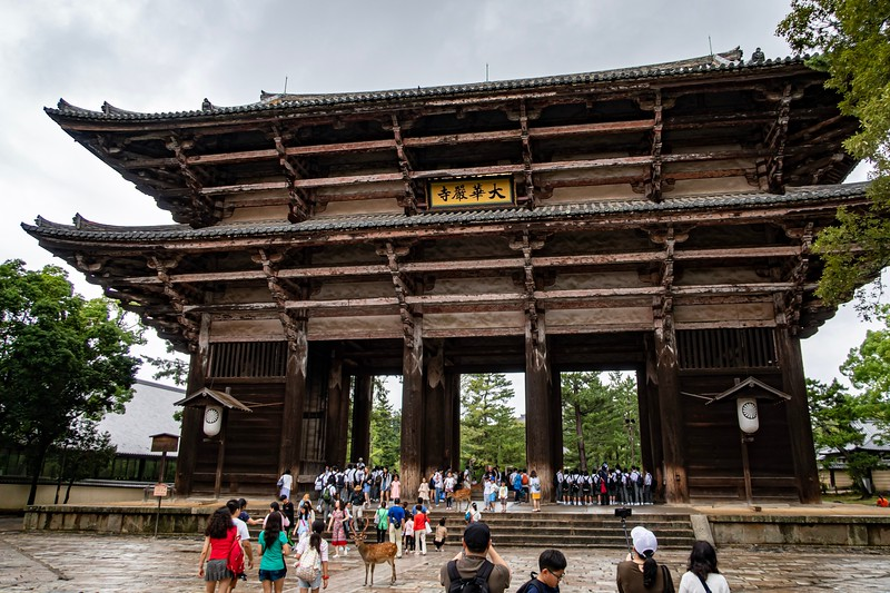 This is a big cool looking gate in Nara.  You can probably see a bunch of Japanese school children under the gate - they were to be found a lot of the sites I visited.  All of the students had the prototypical Japanese schoolboy/girl outfit on with slight differences between the different schools.