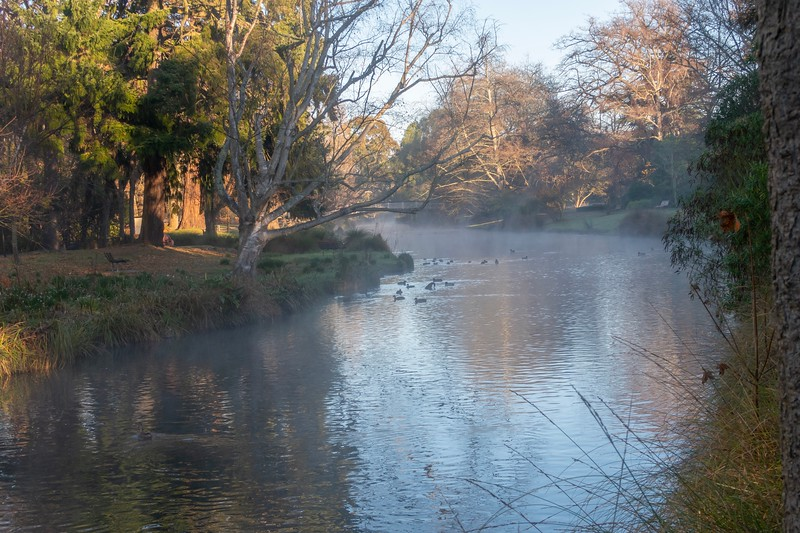 "Christchurch is full of small little rivers passing through it.  You will often see ""punters"", people pushing boats around taking people on the river.  It's quite a lovely town - I would imagine that in Spring time, it'd be INCREDIBLE with the amount of gardens and plants everywhere.  This was a neat misty shot in the morning."
