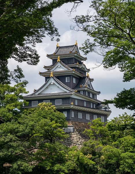 Another nice shot of the Okayama Castle.