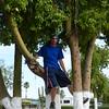 a boy will tree climb every chance he gets