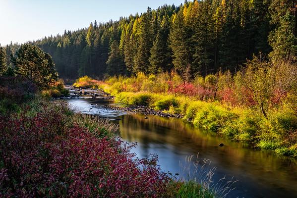 Powder River Sunray
