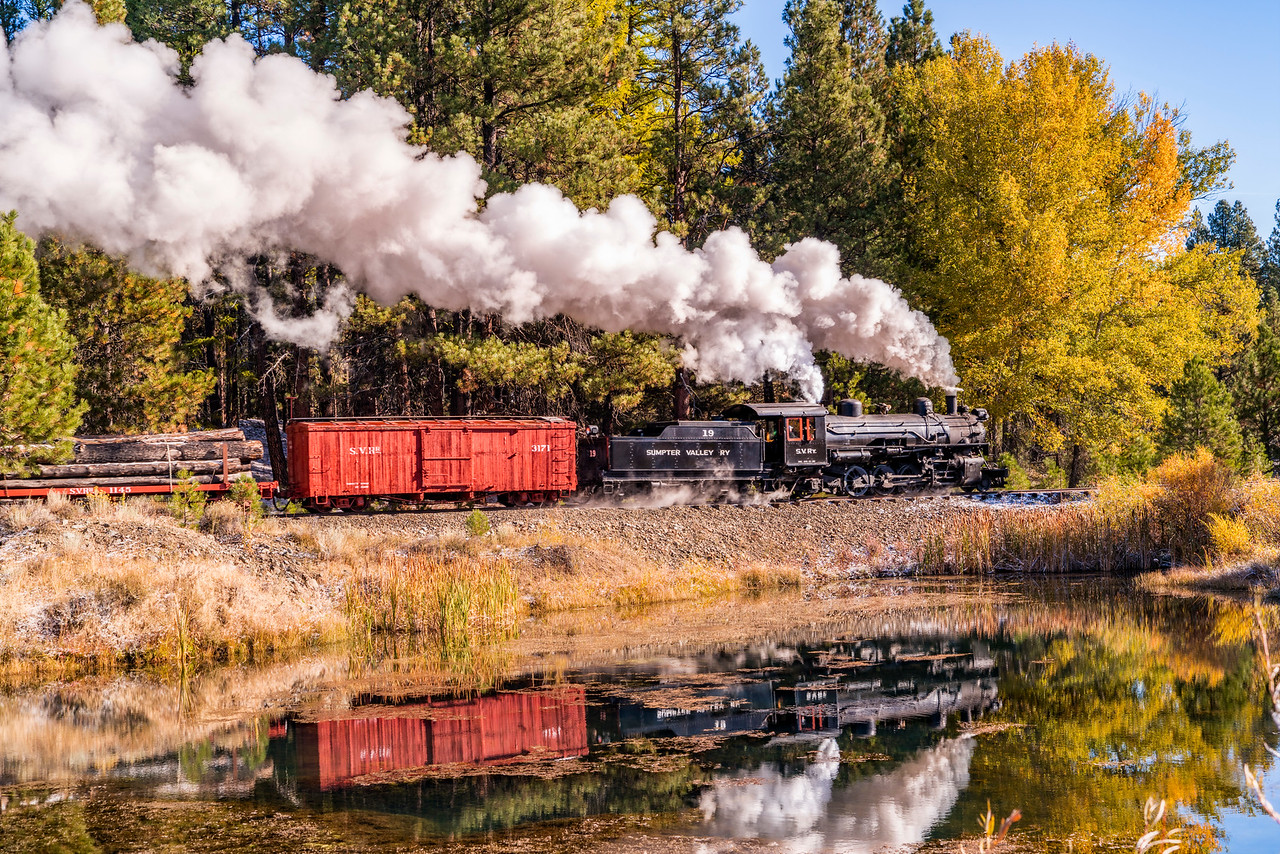 Log Train Reflections