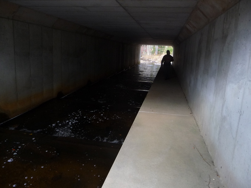 Box culvert under rt. 9