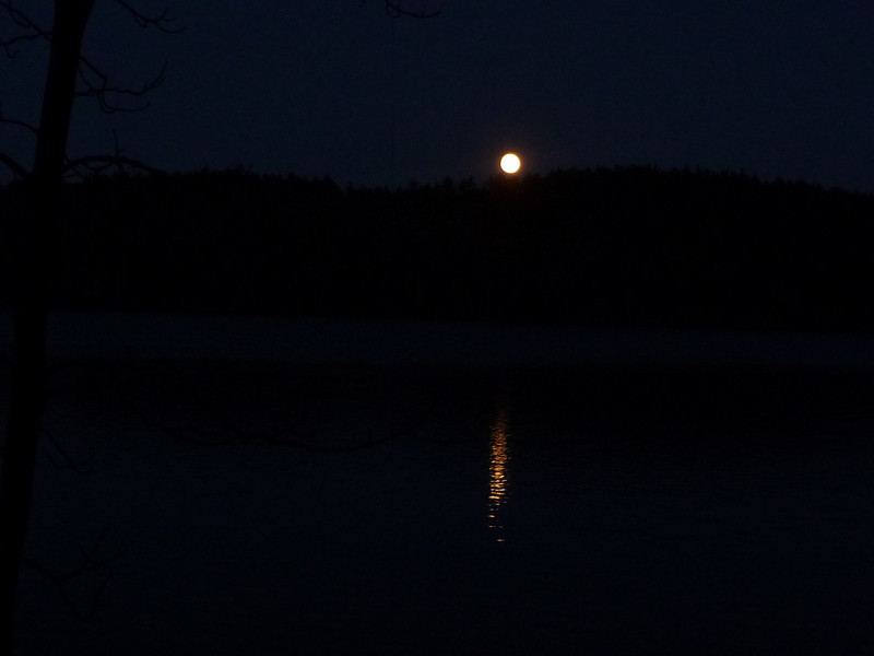 Harvest moon over Otter Pond