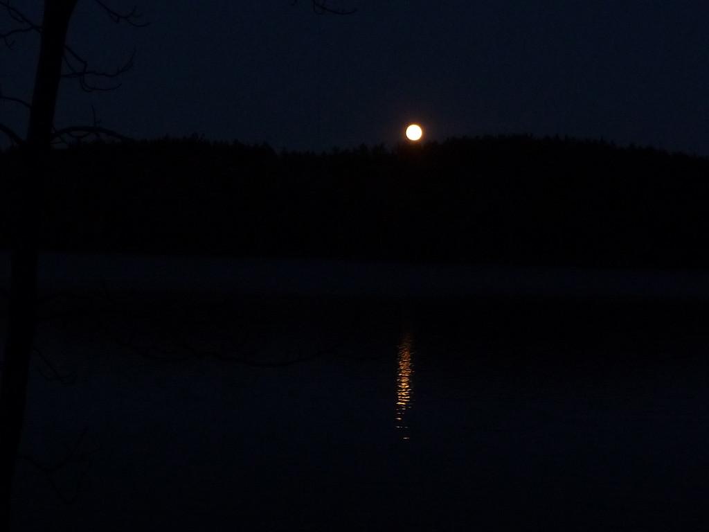 Harvest moon over Otter Pond