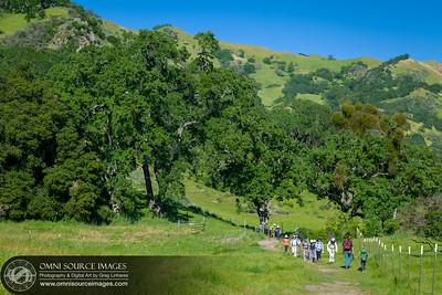 Hiking Sunol Ohlone Wilderness in Spring
