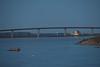 Looking towards the Norris Whitney bridge before sunrise.