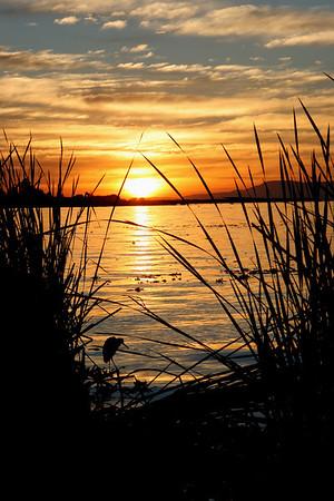 Sunrise and Sets at Ajijic