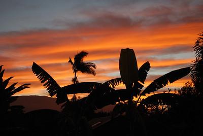 Kilauea backyard December 2, 2012