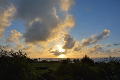 Evening at Kauapea, June 8, 2014