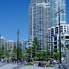 Surfers Paradise Gold Coast x100s  26705