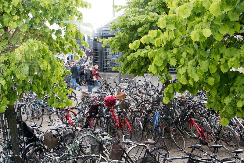 Copenhagen-0981