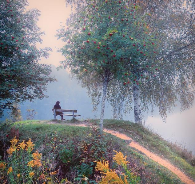 Mindfulness Bench