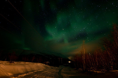 The Northern Lights - Abisko National Park