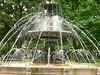 Fountain in the English Garden
