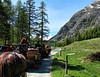 The horse drawn buggies departed at Pontresina, Switzerland and took us leisurely up the Upper Roseg Valley.