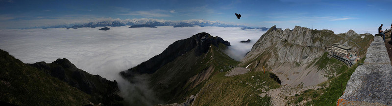 194 degrees field of view. The previous 4 photos in this gallery were taken from the top of the ridge above the Mt. Pilatus Visitor Center at the right of the photo. The Black bird is an Alpine Chough, common to the area.