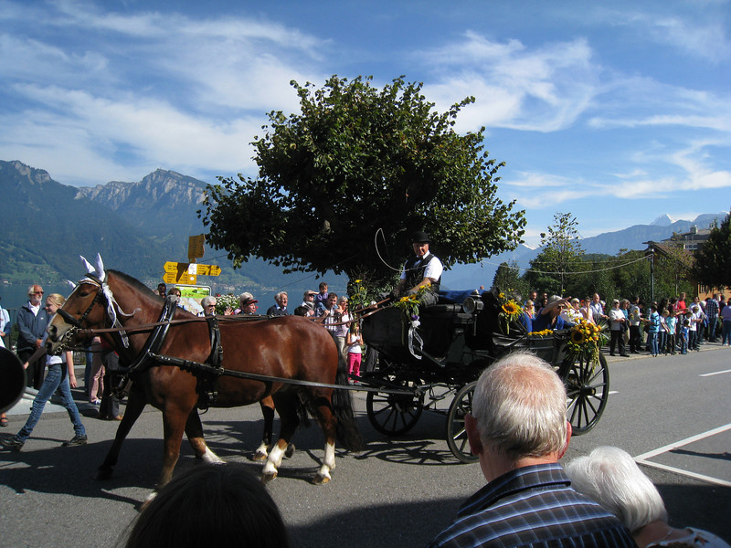 Spiez - this local parade was passing by the rail station during the time I was changing trains on the way to Interlaken.  It was apparently to celebrate the fall grape harvest.