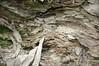 Some Morzine Geology