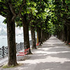 Switzerland / Lugano - this is part of a park that extends along the waterfront between Lugano and Paradiso.